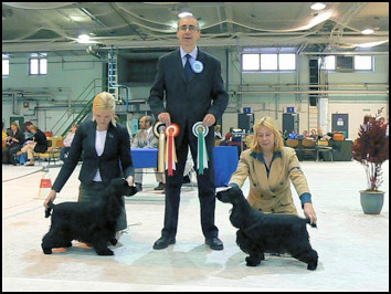 Finnish Spaniel Club 2008