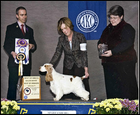 Spartanburg KC Best of Breed